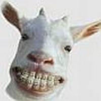 Profilbild von vssmnn
