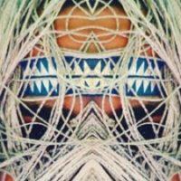 Profilbild von pol/tox