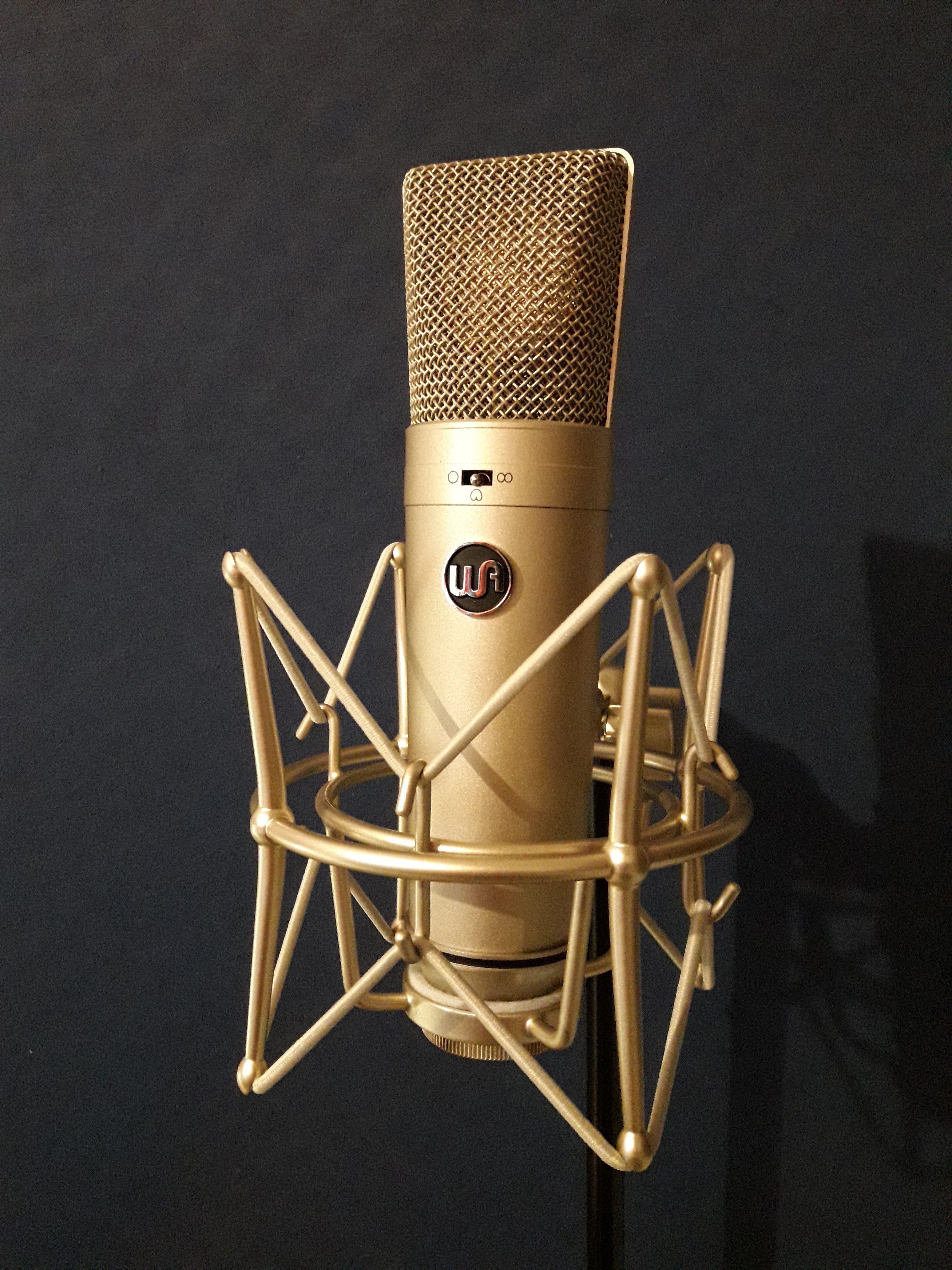 Diverse Mikrofone: Warm Audio, Aston Microphones, Weissklang, AKG, Audio Technica